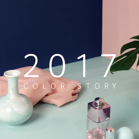 2017 Color Story