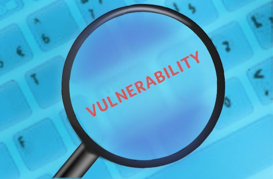 Report Vulnerability